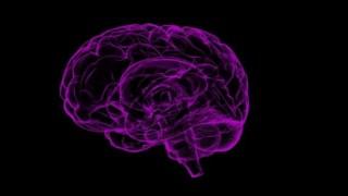 Bilim adamları, istenmeyen anıları silebilen bir protein keşfetti