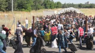 Türkiye'de kaç Suriyeli var, en çok yaşadıkları 3 ilimiz